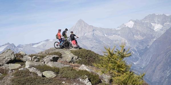 3 Mountainbiker mit Blick auf die Berge