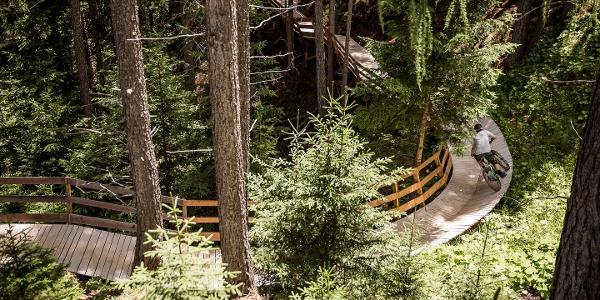 OHN LINE - Holzkonstruktion nach Wallride