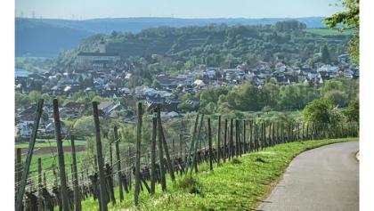 Gundelsheimer Himmelreich