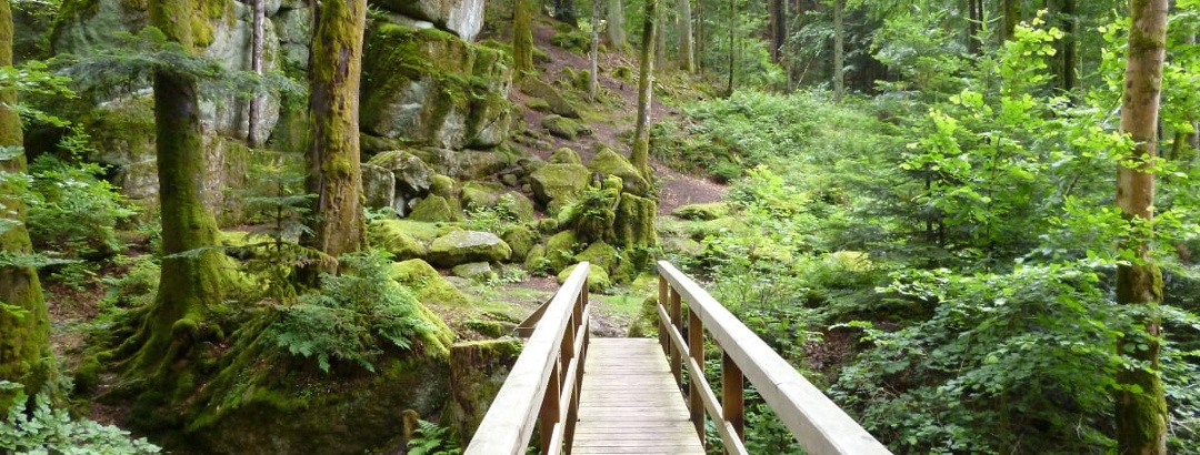 Felsgruppe Wasserfall auf dem Quellenerlebnispfad in Bad Herrenalb