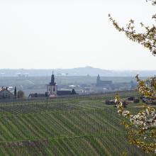 Blick von der Villa Ludwigshöhe
