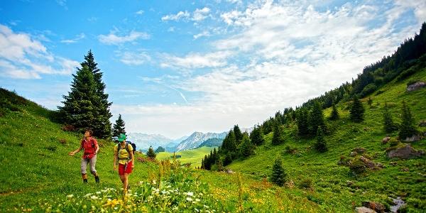 Auf dem Weg vom Col des Mosses zum Pic Chaussy.