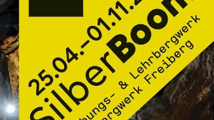 SilberBoom. 4. Sächsische Landesausstellung
