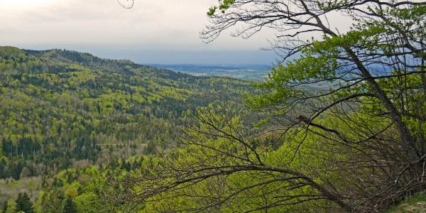 Am Aussichtspunkt Heiligenkopf