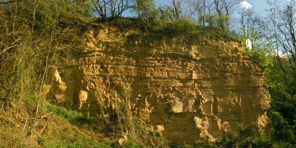 Flonheimer Sandstein am Küstenweg