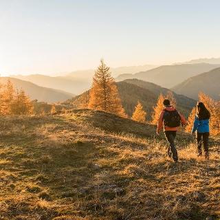 Wandern - Herbst - Lärchengold ®FRANZGERDL