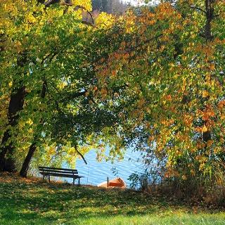 Herbstliche Aussicht auf den See
