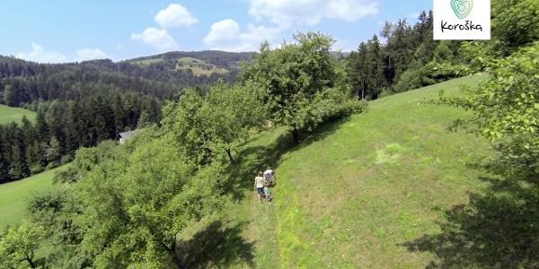Koroška - Zakladnica presenečenj! | Takes you by surprise!