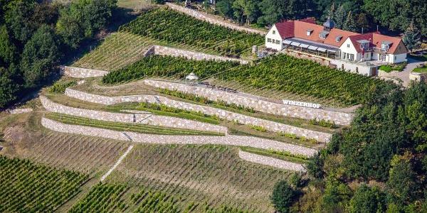 Bella Vista-Winzerhof Golk
