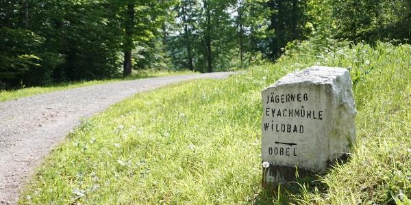Dem Jägerweg folgen wir in Richtung Dobel.