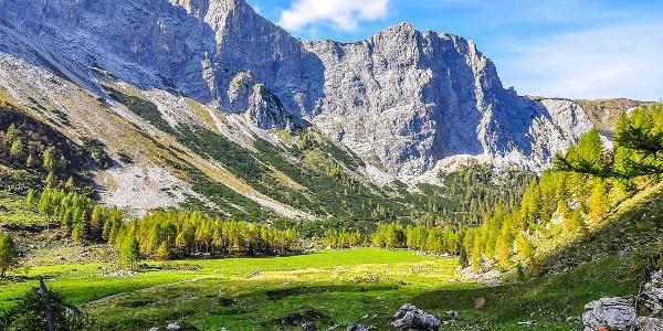 Obere Wolayeralm mit Blick nach Westen zum Biegengebirge mit den nördlichen Ausläufern des Wolayerkopfes und der Biedenköpfe - 3