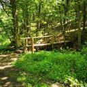 Foto von : Wandertour in der Vulkaneifel: Tal der wilden Endert Ulmen-Cochem •  (03.06.2019 09:34:59 #1)