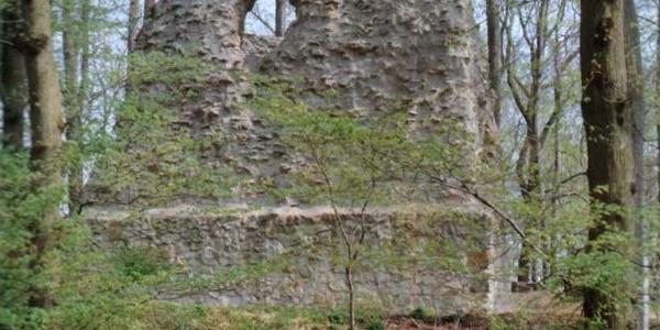 Burgruine Winzenburg
