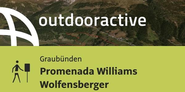 Themenweg in Graubünden: Promenada Williams Wolfensberger