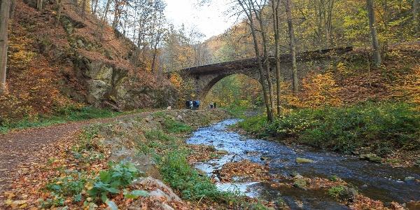 Herbst im Rabenauer Grund