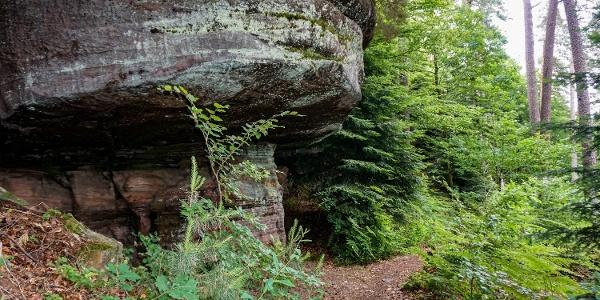 Idylische Pfade entlang der Felsen
