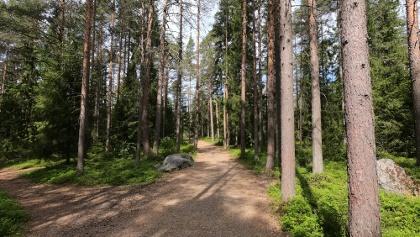 Photo taken along the trail.