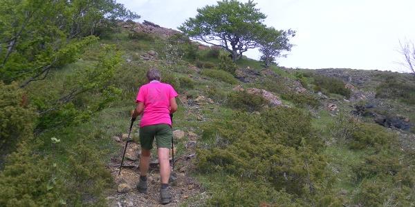 Südhang des Monte Roccabruna