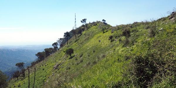 Steilanstieg zum Grat, Mt. Tiriolo mit Sender