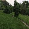 Wacholderheide bei Reichenbach