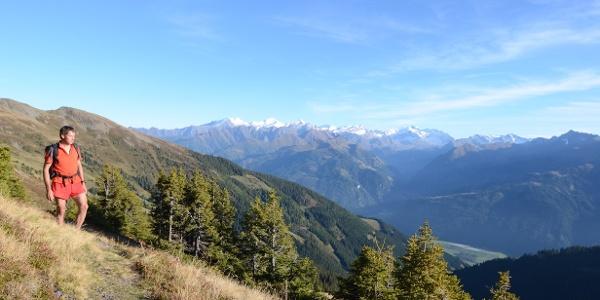 Dieser Blick auf die Tauerngipfel prägt den ganzen Pinzgauer Spaziergang.