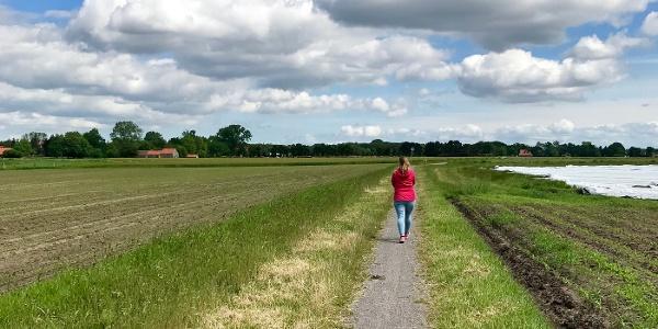 Spaziergängerin auf dem Linsweger Esch