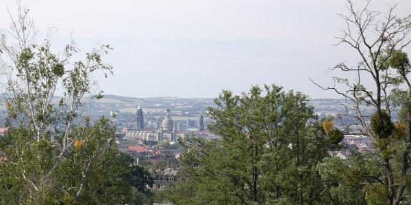 Blick auf Dresden