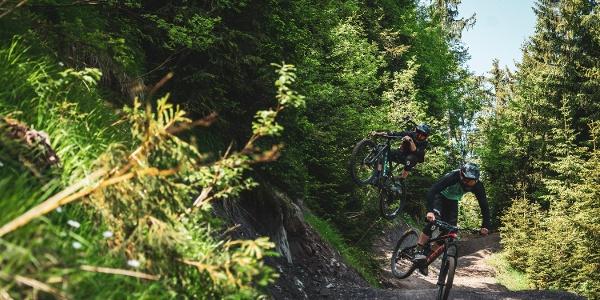 Der Clientis Flowtrail Marbachegg eignet sich sowohl für Anfänger wie auch geübte Biker