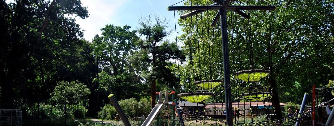 Eine Besonderheit ist der große, baumartige Kletterbaum mit Nestern.