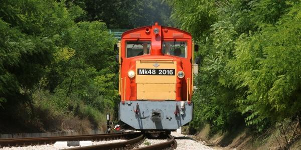 Vonat érkezik Alcsútdobozi arborétum megállóhelyre (Vál-völgyi kisvasút)