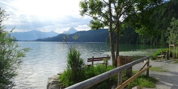 Ausblick auf den Weißensee vom Rundweg aus