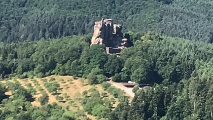 Fleckenstein from Löwenstein