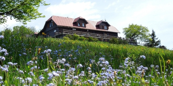 Traisnerhütte