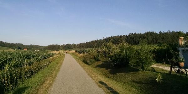 Radweg auf der ehemaligen Bahntrasse