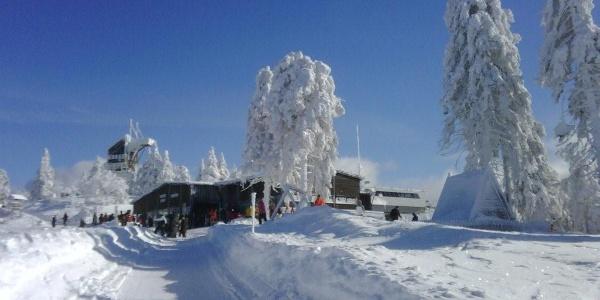 Winterwanderweg zum Wurmberggipfel