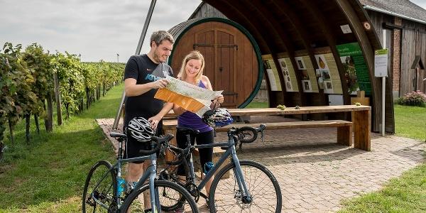 Kurzer Abstecher zum Erlebnisweingartl in Hohenruppersdorf