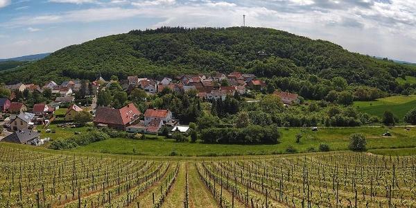 Panorama Burgsponheim