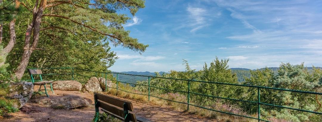 Aussichtspunkt vom Rothenberg-Weg