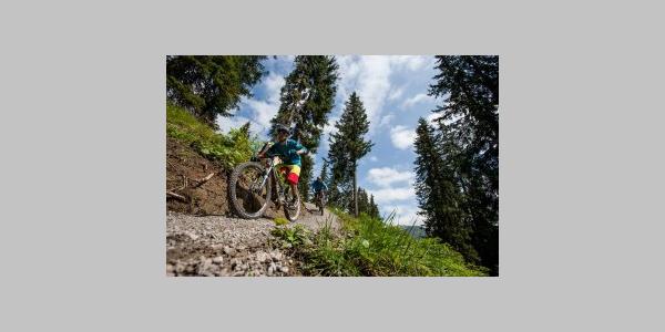 Burgwald Trail - Bikestrecke