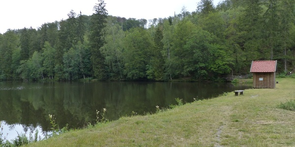 Neuer Teich - idyllisch ruhig gelgen