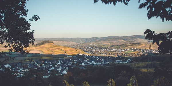 Aussicht am Wein-Wallfahrtsweg