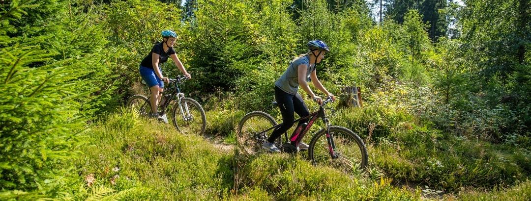 Mountainbiken in Winterberg