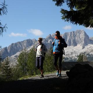 Hiker on Via Alpina