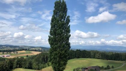 Sicht nach Westen.....Solothurn?