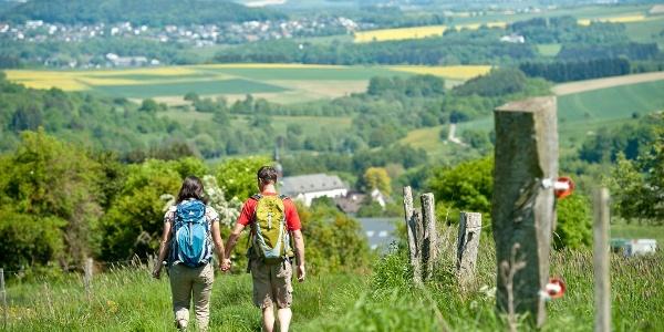 Wanderer auf Elberthöhen