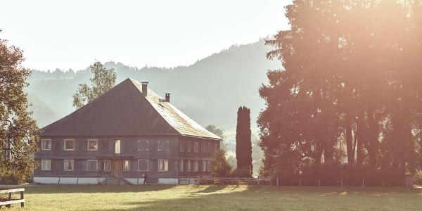 Ein Wälderhaus in Andelsbuch