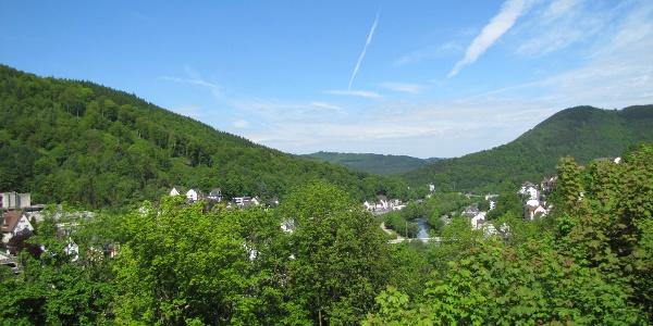 Ausblick von der Burg Altena