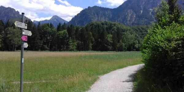 Schwansee-Rundweg
