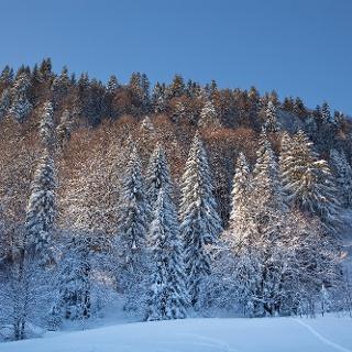 Winterlandschaft in Lenggries