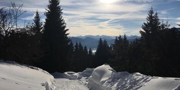 Blick von der Denkalm im Winter
